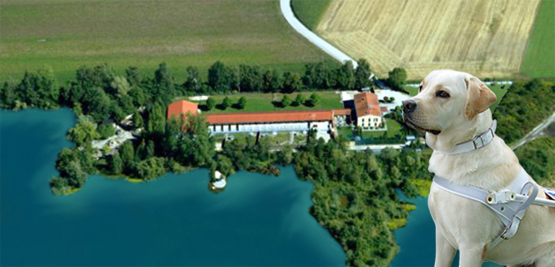Luftbild unserer Anlage in Karlshuld