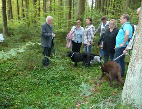 10.10.2014: Mit allen Sinnen erleben. Ein Waldspaziergang der besonderen Art.