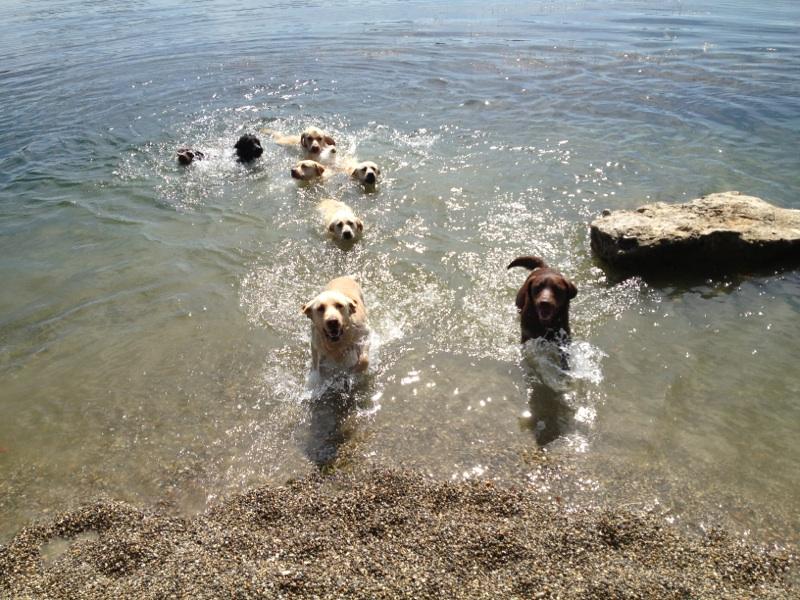 Badespaß in der Freizeit