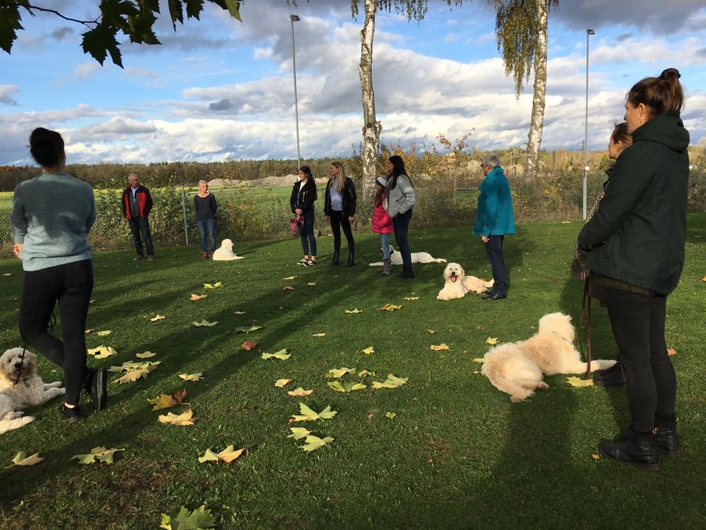 02.11.19: Patenfamilientreffen bei der Blindenführhundschule